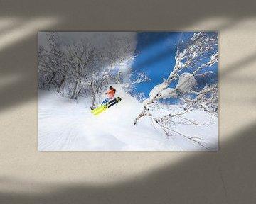 Ski Poudre Extrême Niseko Hokkaido Japon