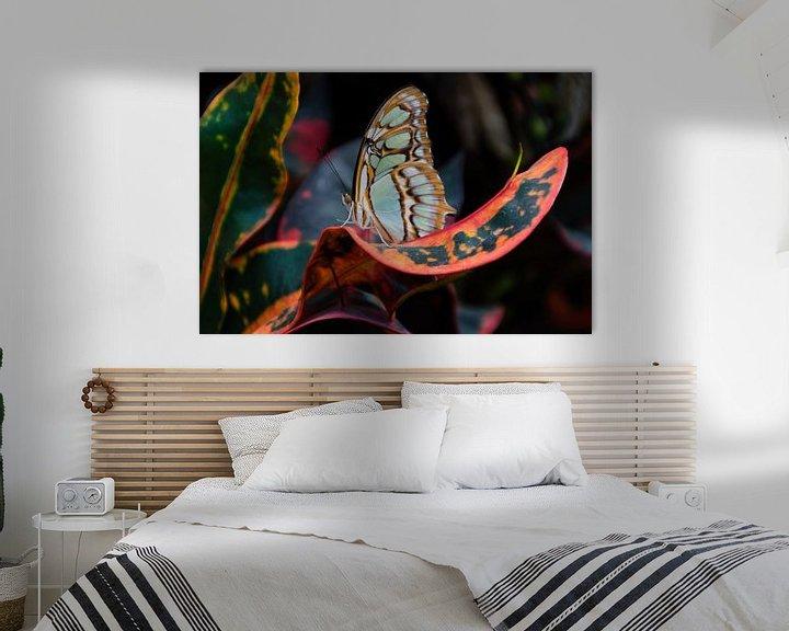 Sfeerimpressie: Vlindertuin Orchideeënhoeve van Mignon Goossens