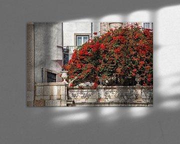 Straatbeeld Lissabon. von Tilly Meijer