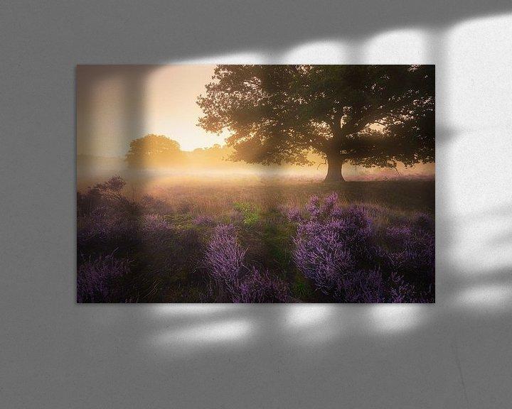 Sfeerimpressie: Paarse Heide Hilversum 3 van Albert Dros