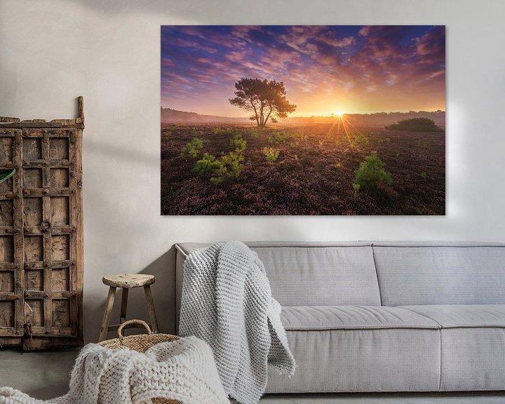 Sfeerimpressie: Paarse Heide Hilversum 6 van Albert Dros