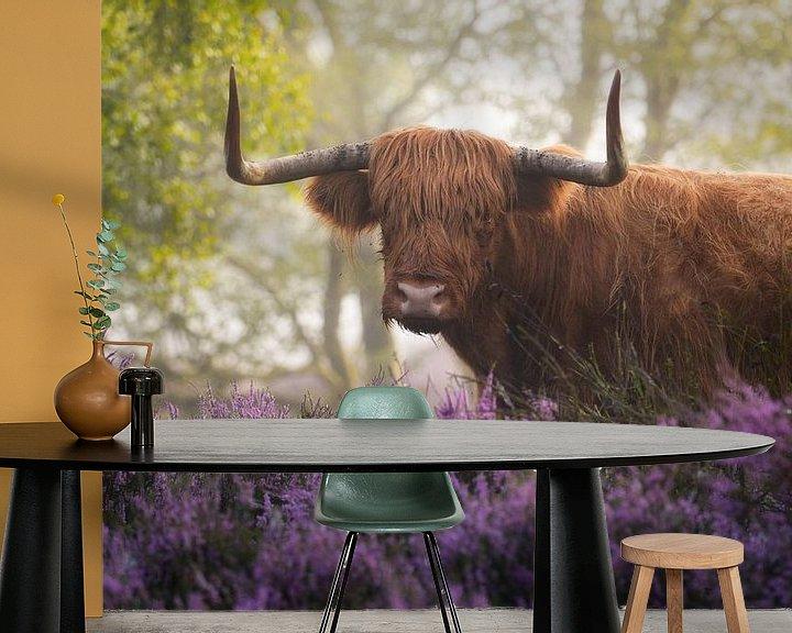 Sfeerimpressie behang: Schotse Hooglander met Paarse Heide van Albert Dros