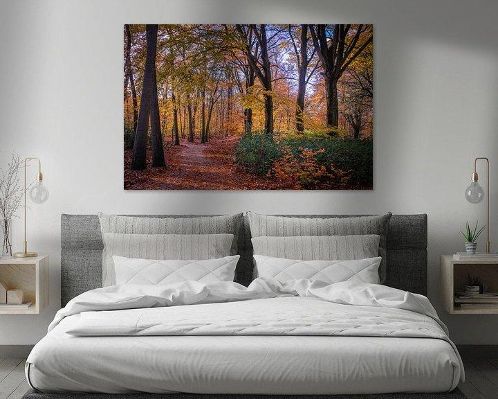 Sfeerimpressie: Wandelpad in prachtige herfstkleuren van Marcel Pietersen