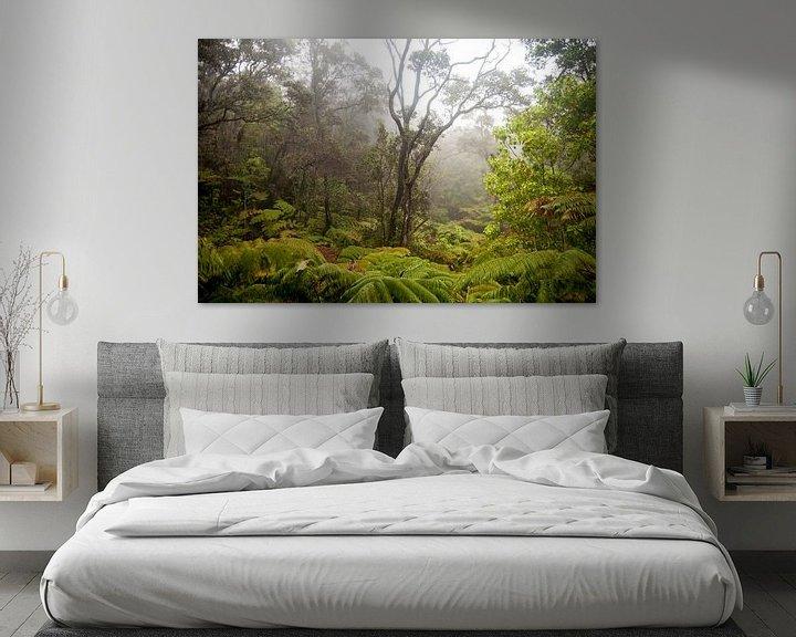 Sfeerimpressie: Regenwoud op het eiland van Hawaii van Ellis Peeters