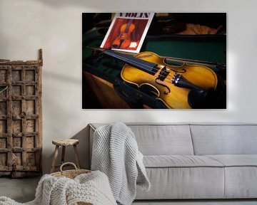 Tweedehands viool van Jan van der Knaap