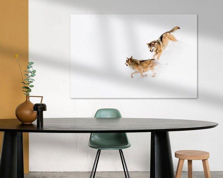 Sfeerimpressie: Spelende wolven van Claudia van Zanten