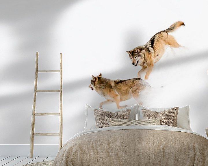 Sfeerimpressie behang: Spelende wolven van Claudia van Zanten
