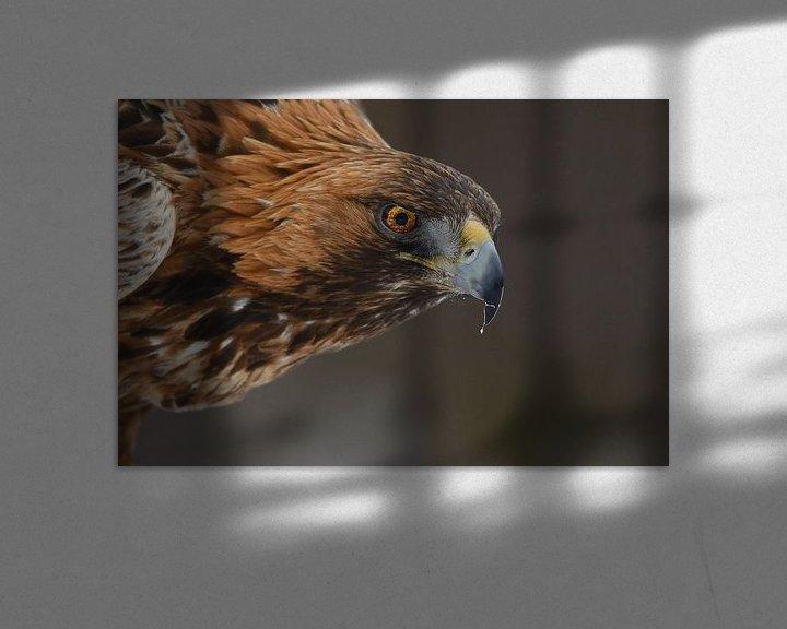 Sfeerimpressie: Eye to eye  van Tariq La Brijn