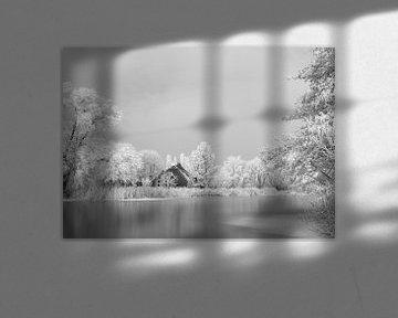 WINTER von Henny van den Berg