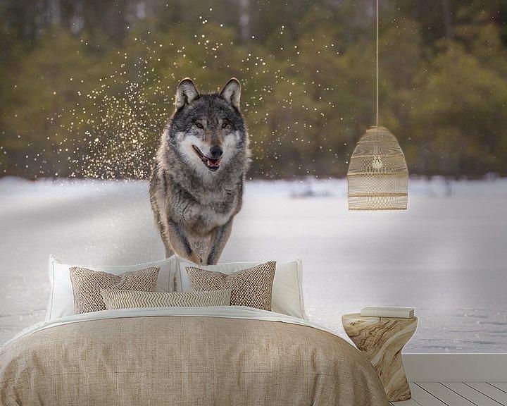 Sfeerimpressie behang: Wolf van Claudia van Zanten