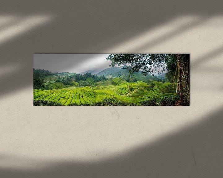 Sfeerimpressie: Theeplantage Cameron Highlands van Ellis Peeters