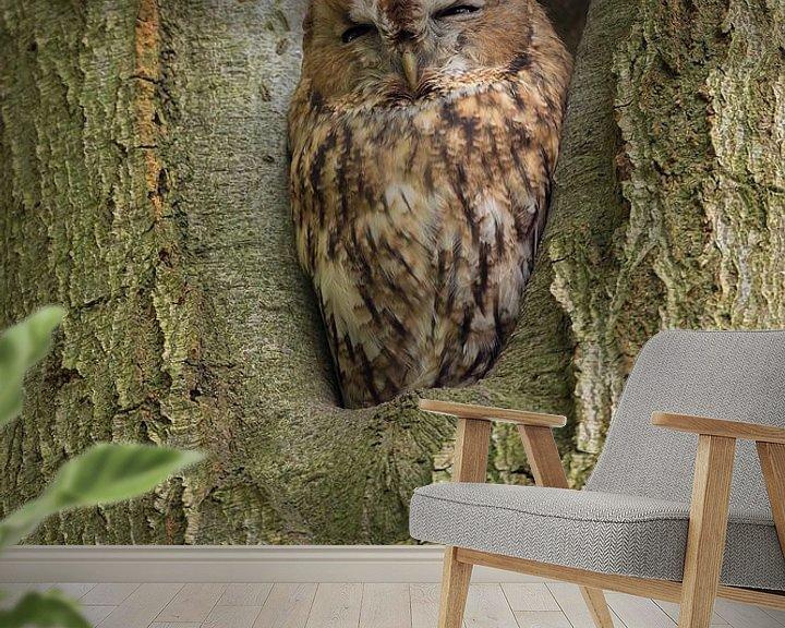 Sfeerimpressie behang: Bosuil zit in een boom te rusten. van Rob Christiaans