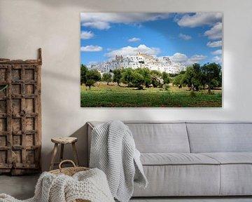 De witte stad Ostuni in Apulië met olijfbomen