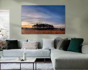 sky van Sylvain  Poel