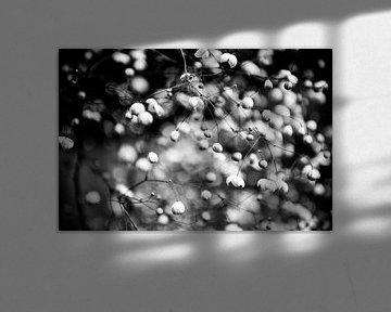 Bloemen abstract von Geert D
