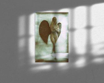 Engel 24 van Jeroen Schipper
