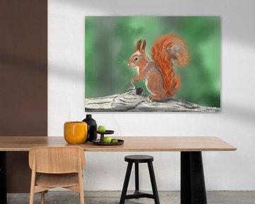 Rode eekhoorn van Hans van Gurp