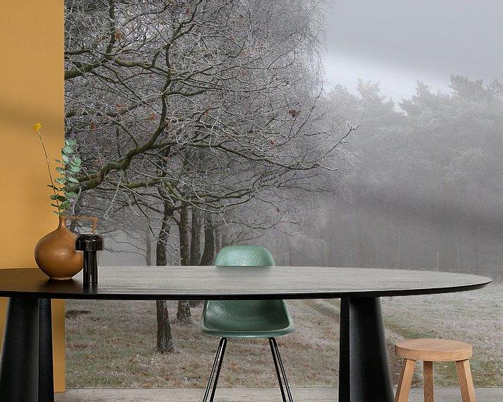 Beispiel fototapete: Bossen Bakel von Anne Coenen