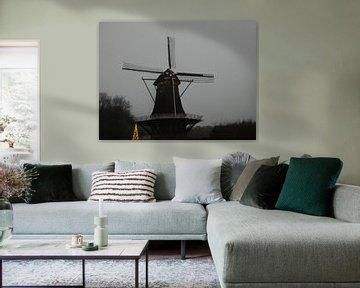 Molen de hoop in Nijkerk van Wilbert Van Veldhuizen