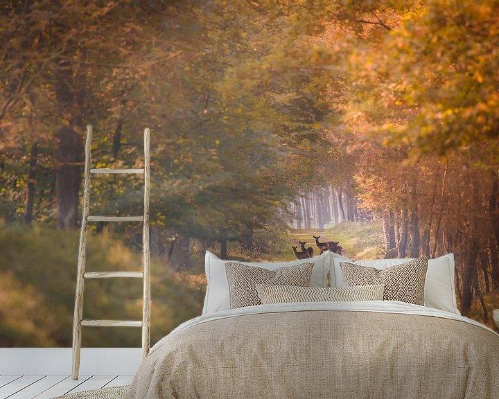 Sfeerimpressie behang: Reetjes in de herfst van Jack Soffers