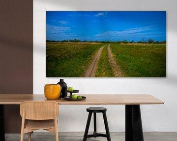 Endless Road van Erik Bravenboer