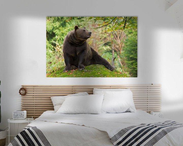 Sfeerimpressie: Bruine beer in het Bayerischer Wald. van Rob Christiaans