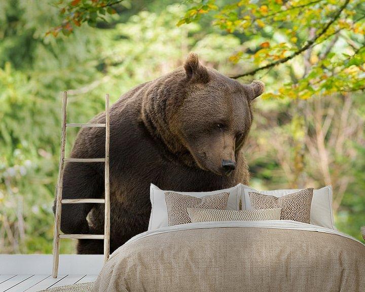 Sfeerimpressie behang: Bruine beer in het Bayerischer Wald. van Rob Christiaans