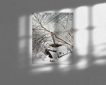 Réservoir dans la neige #1 sur Olivier Photography