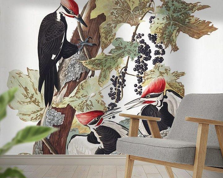Sfeerimpressie behang: Noord-Amerikaanse Helmspecht