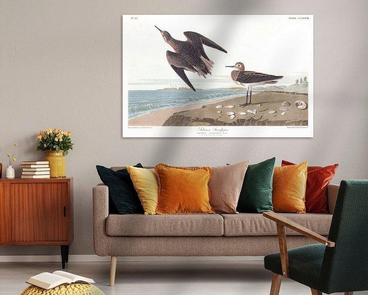 Beispiel: Weißbürzelstrandläufer