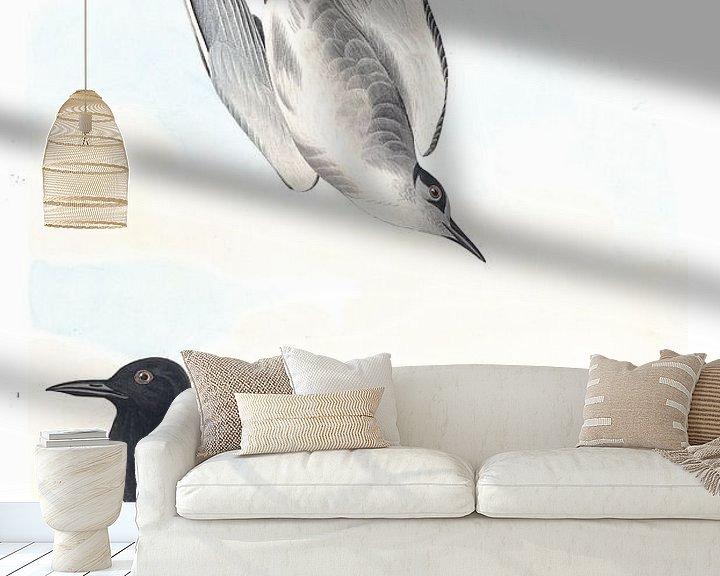 Beispiel fototapete: Trauerseeschwalbe