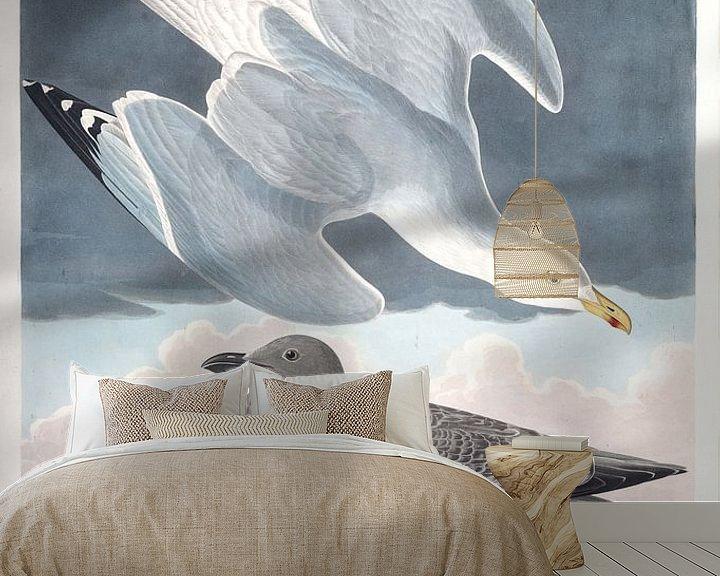 Beispiel fototapete: Silbermöwe