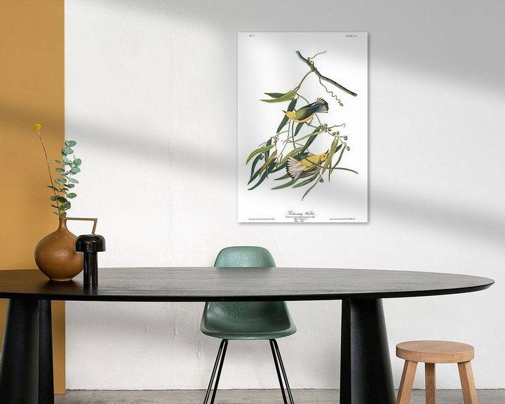 Beispiel: Zitronenwaldsänger