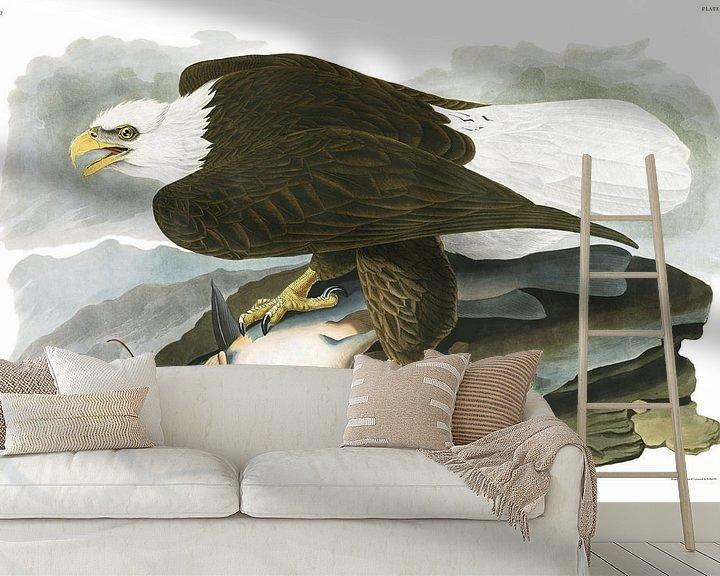 Beispiel fototapete: Weißkopfseeadler