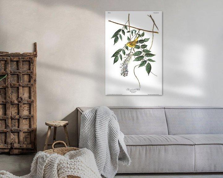 Sfeerimpressie: Mangrovezanger