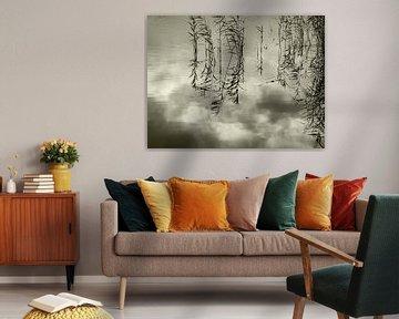 Reflecties van riet en wolken in een stil meertje von Anneriek de Jong