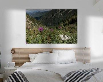Apollovlinder in landschap von Youp van den Heuvel