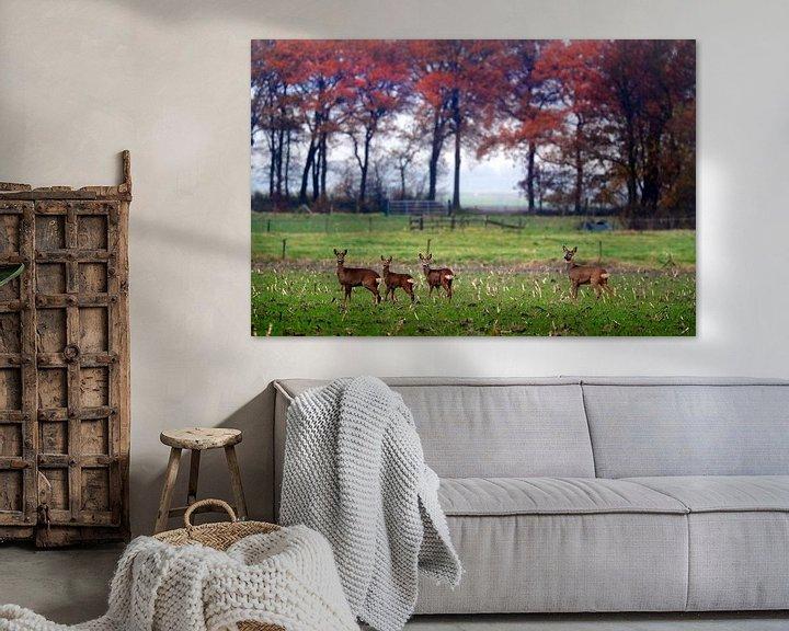 Sfeerimpressie: Reeën  in herfst landschap   van Niels  de Vries