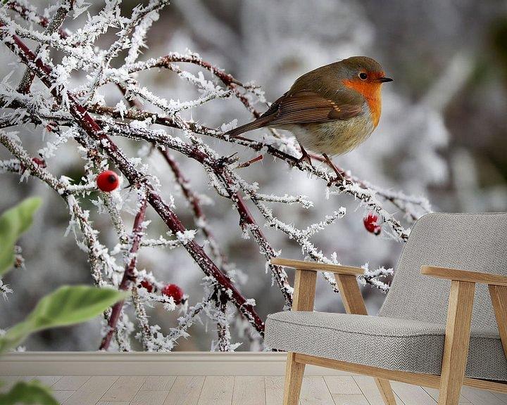 Sfeerimpressie behang: roodborstje  winter van Niels  de Vries