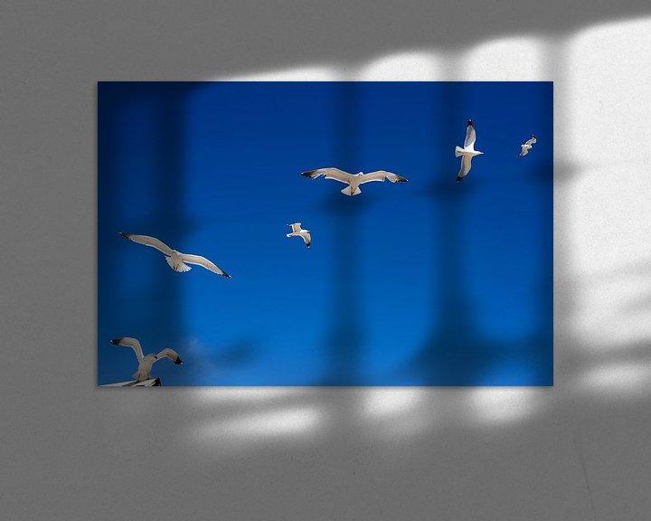 Sfeerimpressie: Meeuwen  van Niels  de Vries
