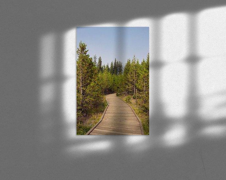 Sfeerimpressie: Pad naar Lake Yellowstone   van Jeanine Verbraak