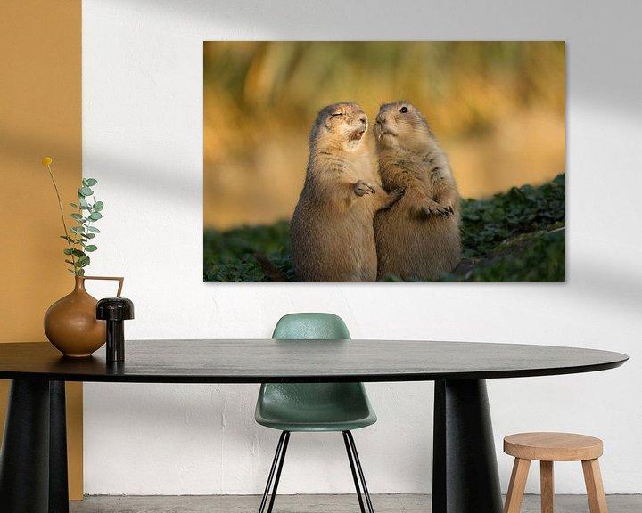 Sfeerimpressie: Prairiehondjes blooper van Jeanine Verbraak