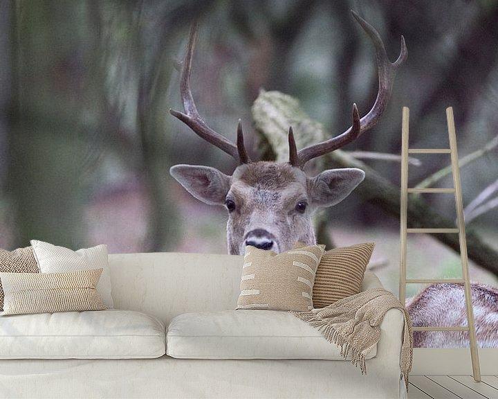 Sfeerimpressie behang: Damhert in het bos van Jeanine Verbraak