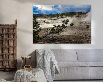 porcelain basin - yellowstone national park van Koen Ceusters