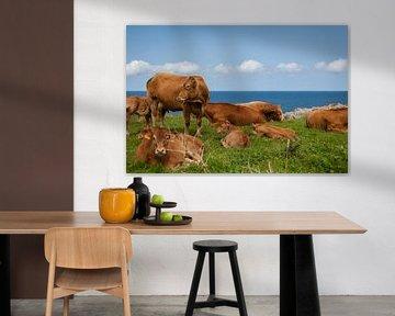 Koeien in een veld bij de zee von Evelien Buynsters