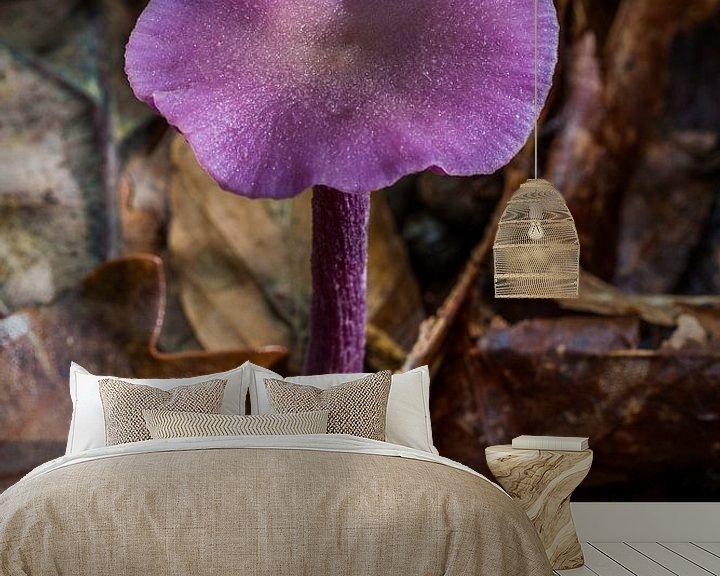 Sfeerimpressie behang: purple mushroom van Koen Ceusters