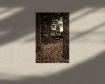 Eilean Donan (Dornie) Castle through the woods von Luis Boullosa
