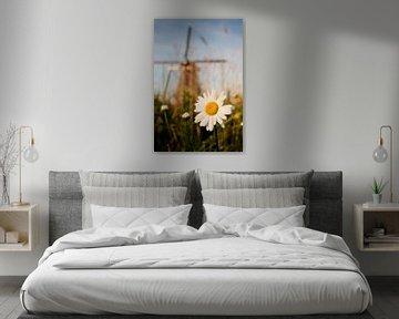 Margriet bij Kinderdijkse molen van Halma Fotografie