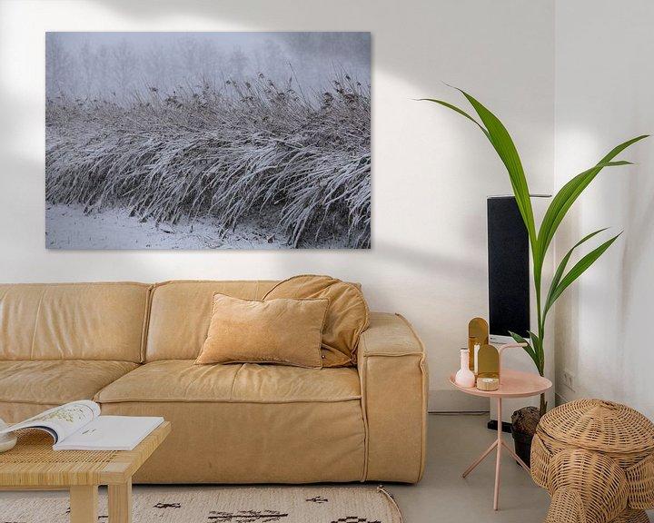Sfeerimpressie: Besneeuwde rietstengels op het platteland. van Paul Wendels