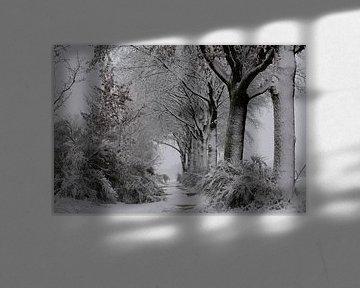 Schnee, Wind und Kälte im Polder.